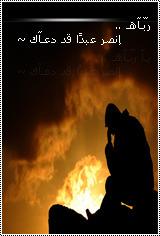 الصورة الرمزية ahmed-anwar