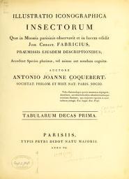 Cover of: Illustratio iconographica insectorum quæ in Musæis Parisinis   Antoine Jean Coquebert de Montbret